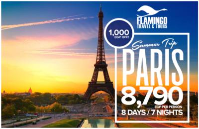 Flamingo_Paris-Summer